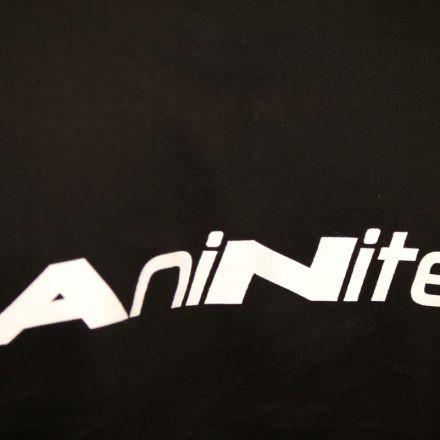 Aninite 2015 @ Multiversum