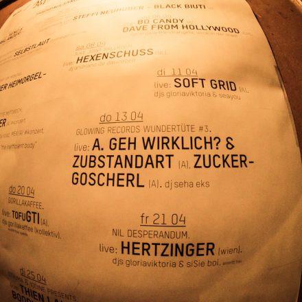 Wundertüte #3 - A.geh wirklich & Zuckergoscherl @ Rhiz Wien