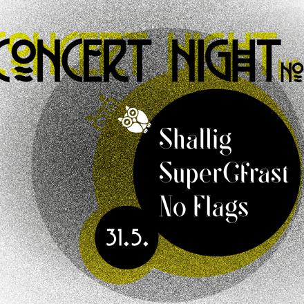 Concert Night #2 (Austropop Edition)