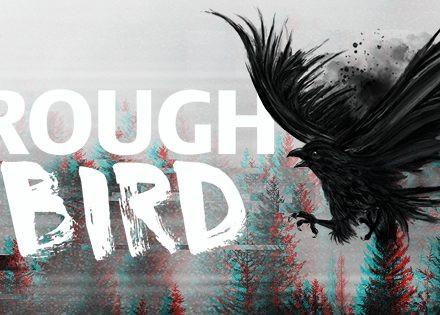 The Rough Bird Night