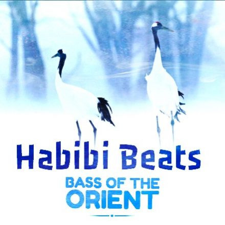 Habibi Beats | Bass of the Orient - DJ & Live Music Party