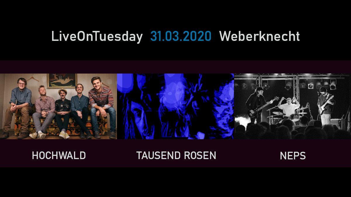 Live On Tuesday: Hochwald • Tausend Rosen • Neps am 31. March 2020 @ Weberknecht.