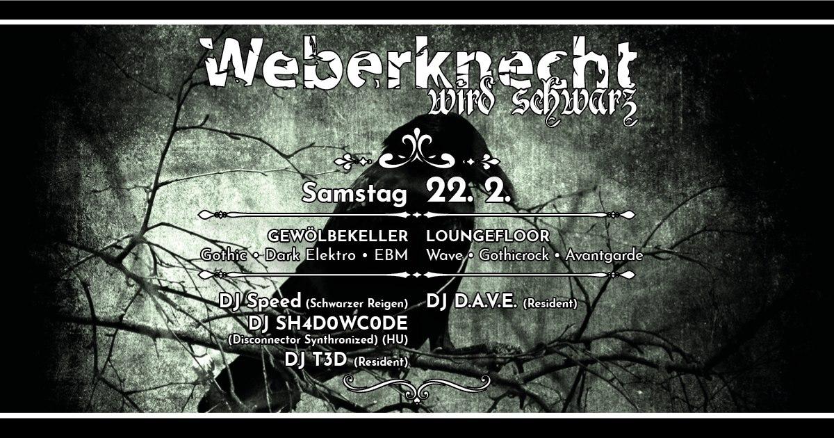Weberknecht wird schwarz am 22. February 2020 @ Weberknecht.
