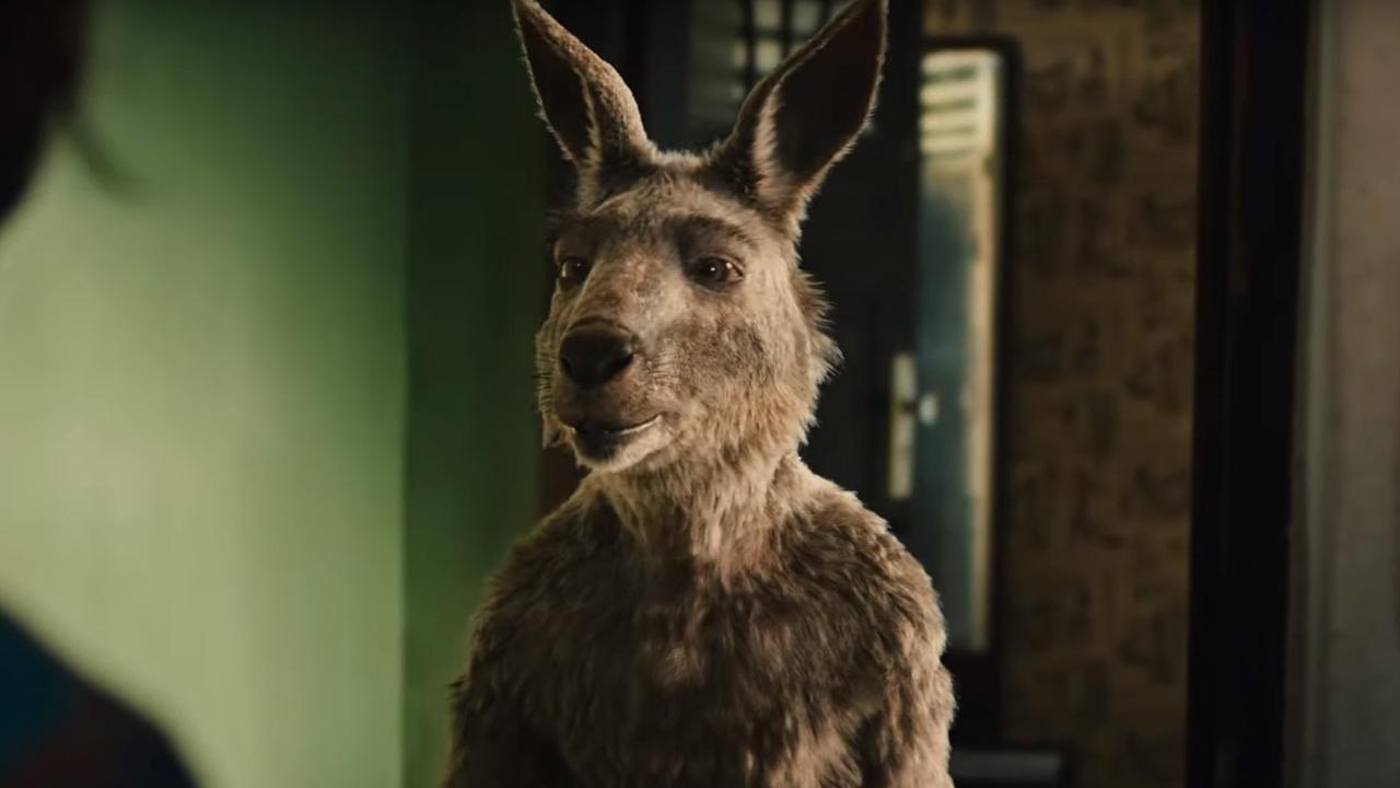 Emma, Onward - Keine halben Sachen, Die Känguru-Chroniken