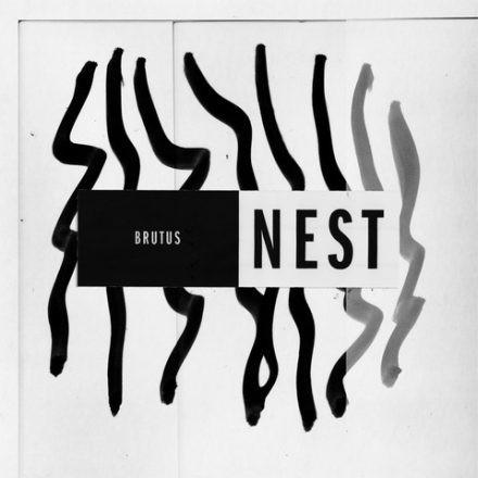 Nest - Brutus